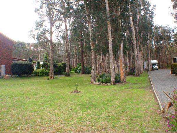 43 Cambage Street Pindimar NSW