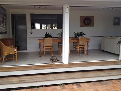 back living area - taken from back yard.jpg